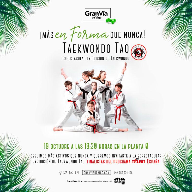Exhibición de Taekwondo del club TAO