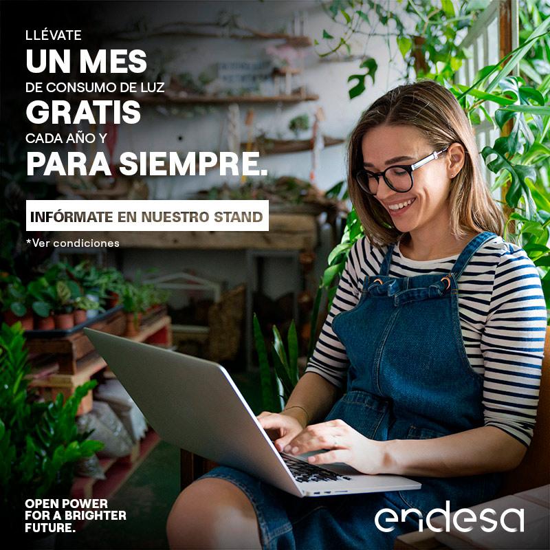 Promociones Un mes gratis – Endesa Gran Vía de Vigo